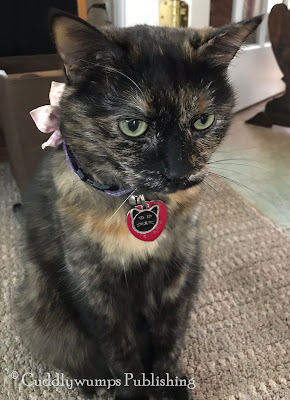 Real Cat Paisley selfie 5
