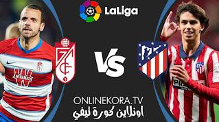 مشاهدة مباراة أتلتيكو مدريد وغرناطة بث مباشر اليوم 13-02-2021 في الدوري الإسباني