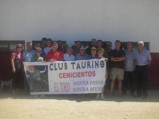 Club Taurino Cenicientos