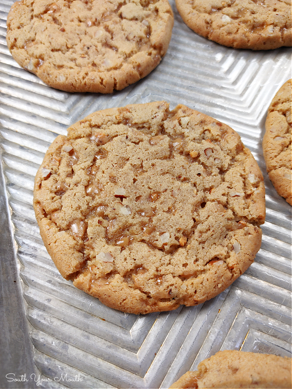 Butterscotch Crunch Cookies! An old-fashioned cookie recipe with brown sugar and toffee bits for double the butterscotch flavor and toasted pecans for crunch. Freeze and cut for picture-perfect cookies any time you have a craving!