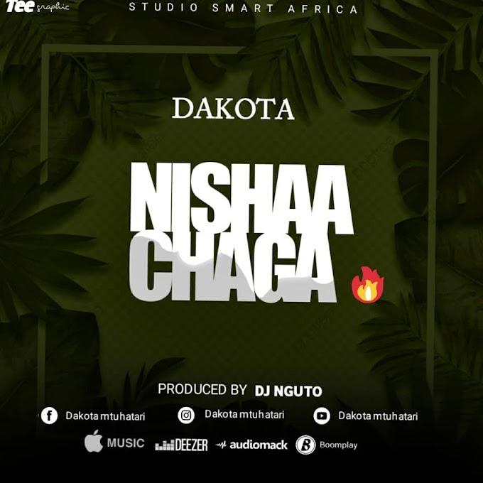 AUDIO | Dakota - Nishaachaga | Free Download now