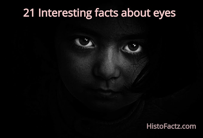21 Interesting facts about eyes