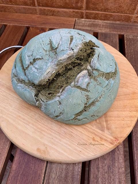 Pan payés con espirulina (sin gluten)