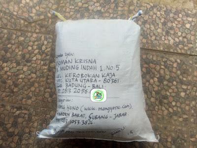 Benih padi yang dibeli  NYOMAN KRISNA Badung, Bali. (Setelah packing karung ).
