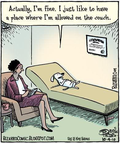 Funny Dog Therapist Couch Picture