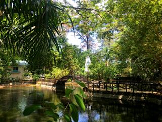Argao Nature Park - Argao Cebu