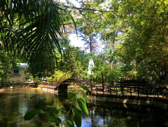 Argao Nature Park