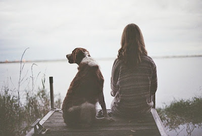 dog depression and illness