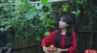Li Ziqi biến mất, đây là 5 sự thật về những người dùng YouTube sống trong làng và giỏi nấu ăn Ảnh: Instagram / cnliziqi