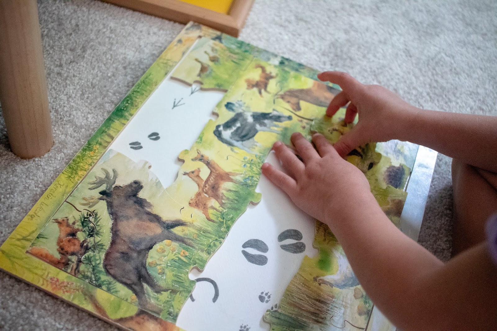 Puzzles for preschoolers, some options and puzzle types to consider