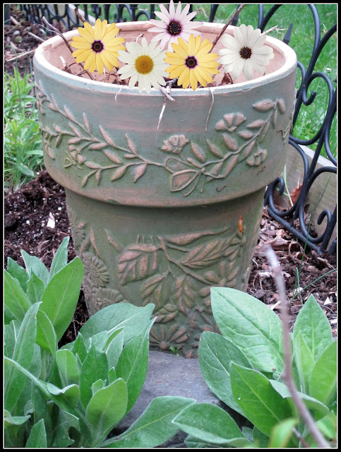 Repurposed Bird Bath Garden Planter