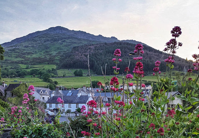 View of the Cooley Mountains from Carlingford Town in Ireland