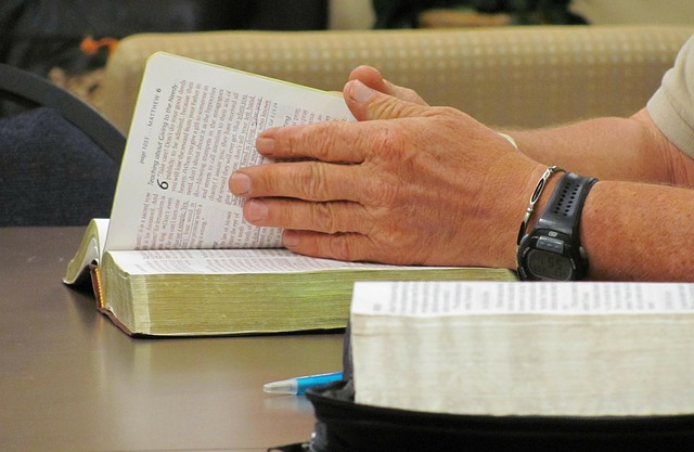 leer-la-biblia-en-un-ano