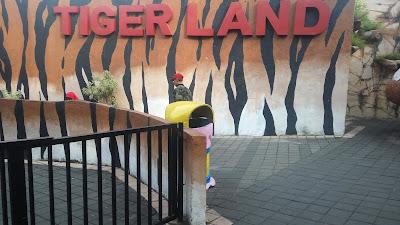 tiger land