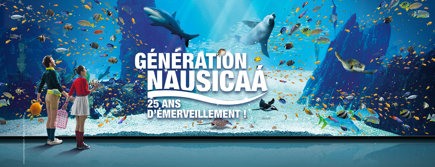 Nausicaá le plus grand aquarium dEurope à Boulogne sur mer