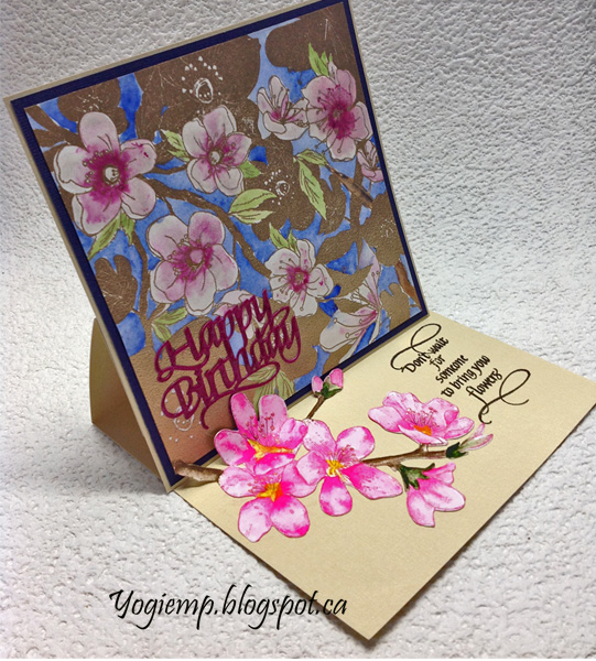 http://yogiemp.com/HP_cards/MiscChallenges/MiscChallenges2018/MCJan18_EaselCherryBlossom_ECDHappyBirthday_Don'tWait.html