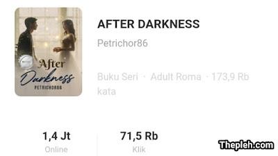 Novel After Darkness Full Episode