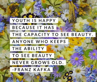 beauty-quotes-1