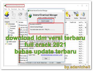 download idm versi terbaru full crack 2021 bebas update terbaru