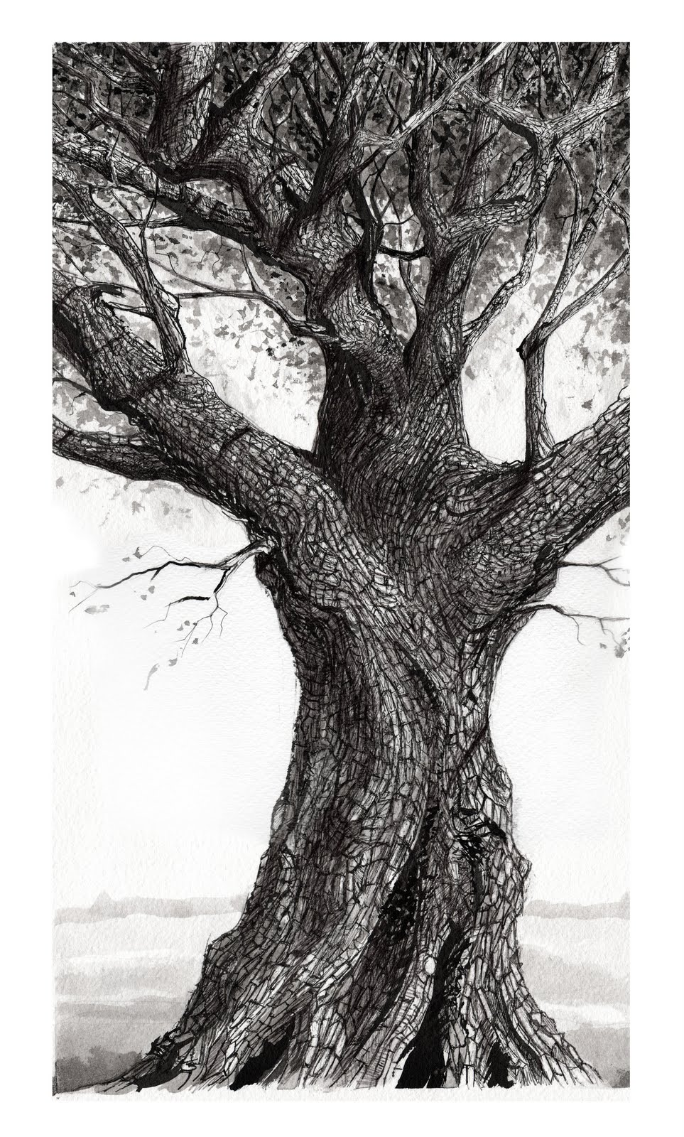 It's just a photo of Critical Tree Pen Drawing