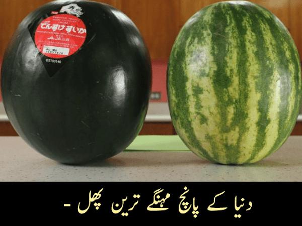 دنیا کے پانچ مہنگے ترین پھل - Five Most Expensive Fruits In The World