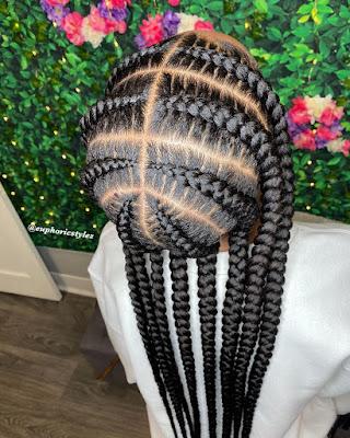 Top Notch Braids Hairstyles 2020
