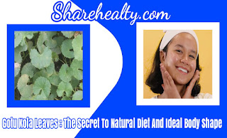 Gotu Kola Leaves : The Secret To Natural Diet And Ideal Body Shape