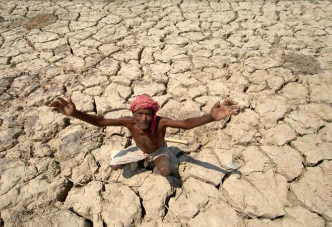 Petani india bunuh diri