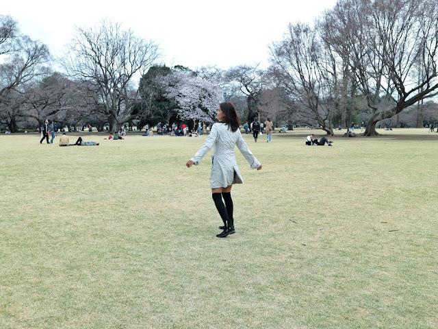 Picnic in Shinjuku Gyoen