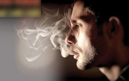 6 Jenis Makanan ini dipercaya Mampu membuat Anda Berhenti Merokok