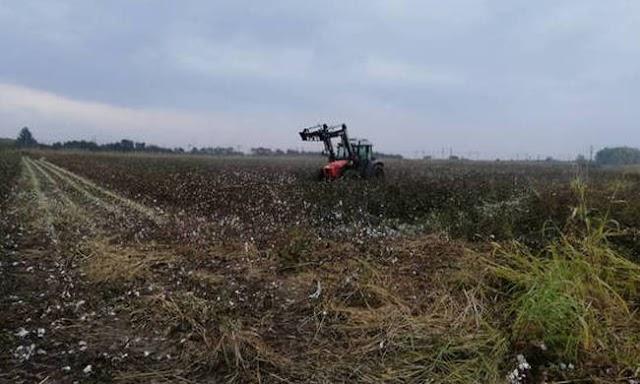 Το κράτος μοιράζει στρέμματα: Δωρεάν γη σε αγρότες, ανέργους και νέους
