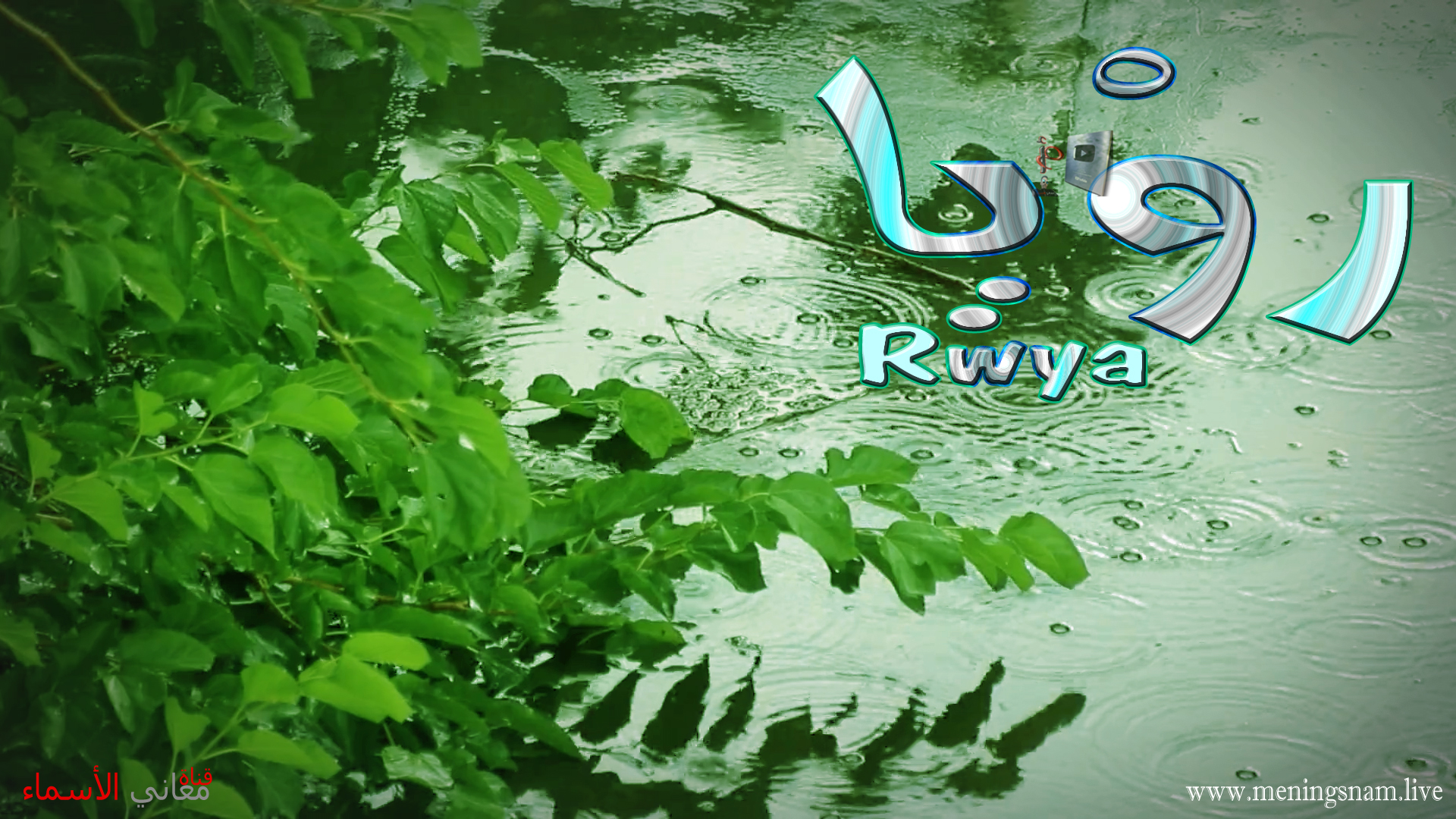 ,معنى اسم رويا, وصفات حاملة هذا الاسم Rwya,