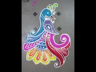 peacock rangoli for pongal festival
