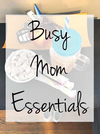 Busy Mom Essentials with Playtex Sport