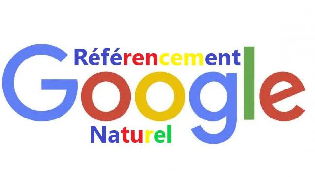 SEO : Le Référencement Naturel Définition, Rôle et Principes Généraux.