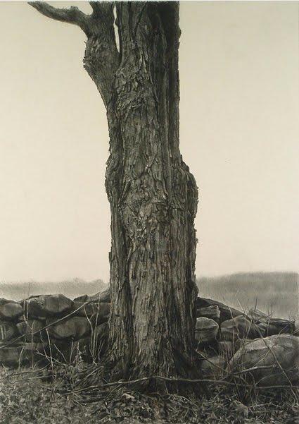 charcoal realism