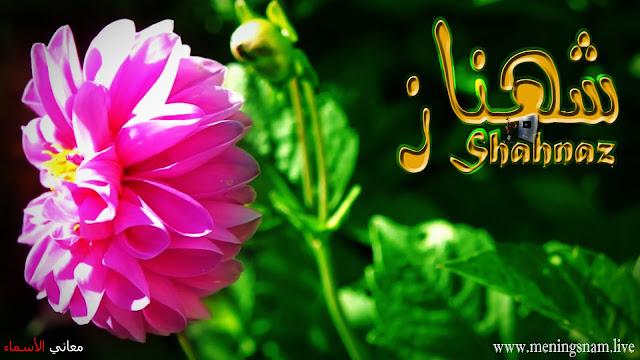 معنى اسم شهناز وصفات حاملة هذا الاسم Shahnaz