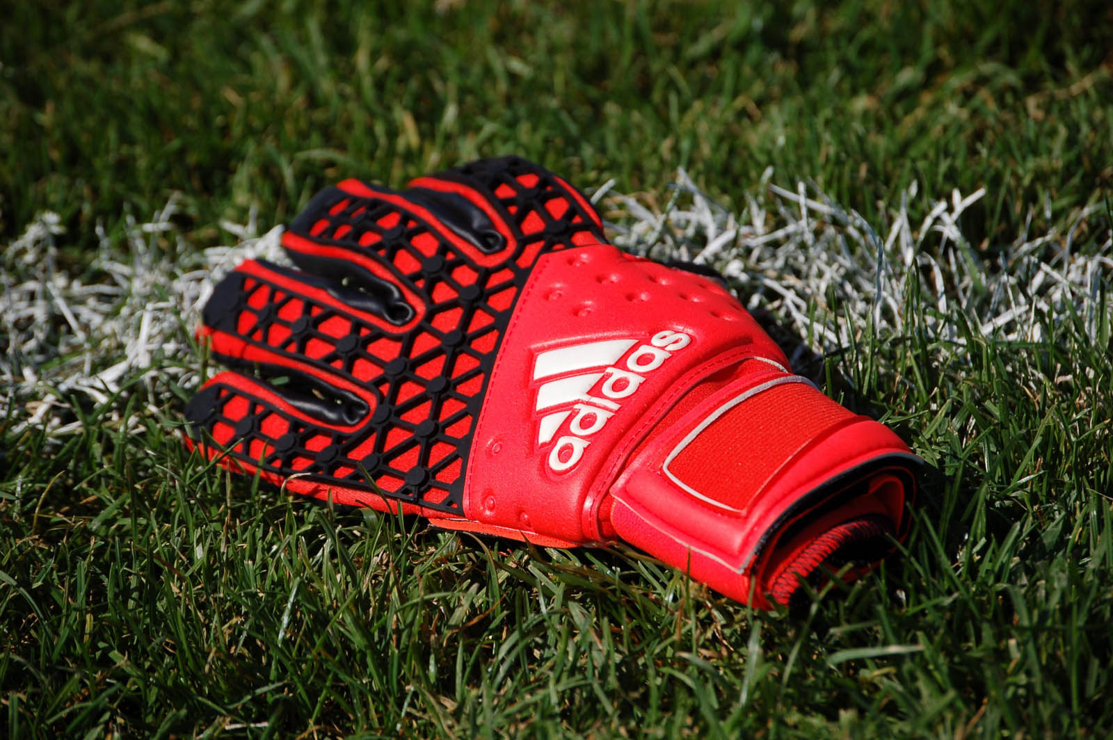Adidas Adults Predator Zones Fingertip Goalkeeper Gloves ... |Goalkeeper Gloves Adidas 2015