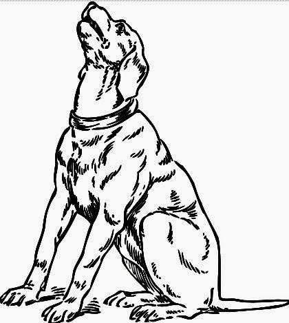 johnny_automatic barking dog