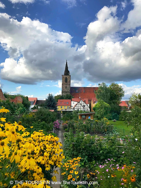 A colourful kitchen garden with red rooftops and a church spire in the distance.