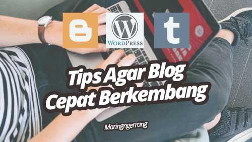 Tips Agar Blog Cepat Berkembang