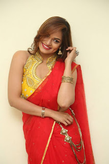 Actress Ashwini Po Shoot Stills In Red Saree With Golden Choli (13).jpg