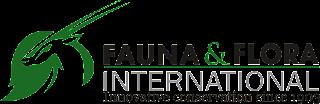 logo de flora y fauna logo fauna & flora international logo flora dan fauna logo flora fauna logo flora y fauna