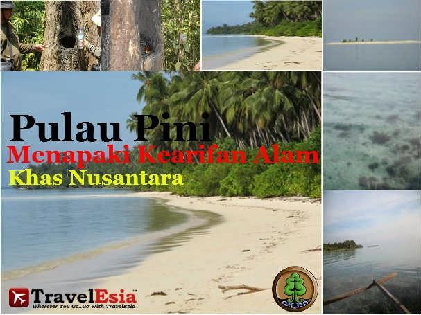 Pulau Pini