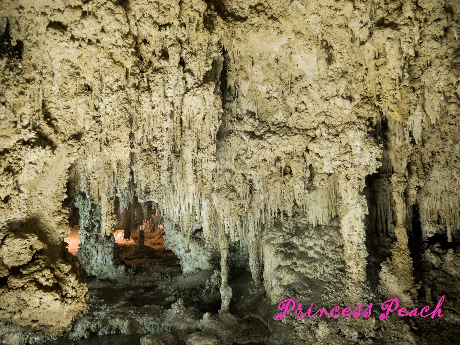 卡爾斯巴德洞窟國家公園-kings-palace-tour