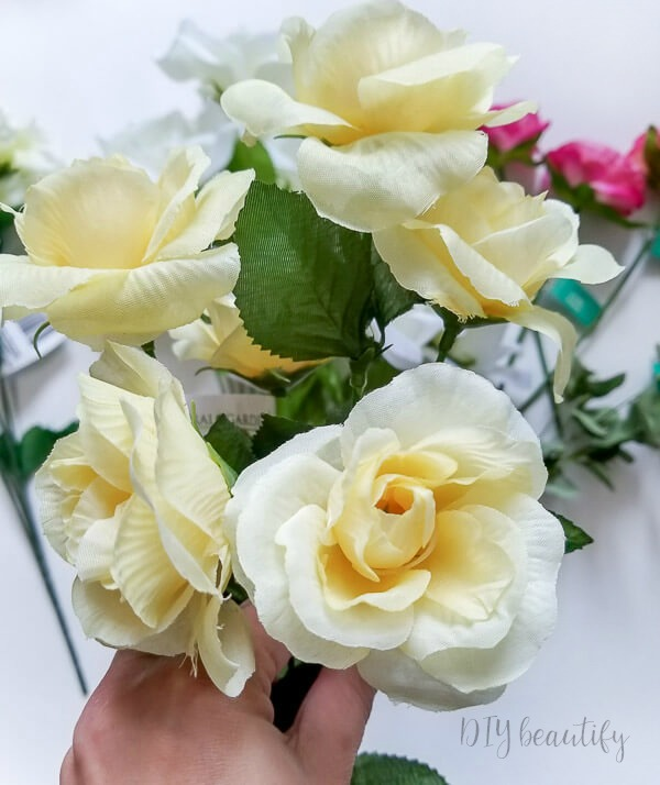 buttery yellow roses
