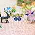 [APK] New Pokémon Update Adds 80 New Pokémon, Berries And More