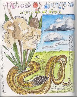 http://possumpatty.blogspot.com/2016/06/the-summer-solstice-whats-on-my-mind.html