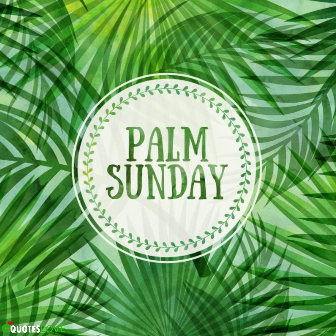 (Latest) Palm Sunday Images, Photos, Posters, Wallpaper