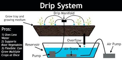 Hydroponics Fertigation System (Fertilizer and Drip Irrigation)